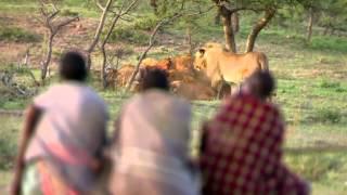 Cómo consiguen comida en Africa thumbnail