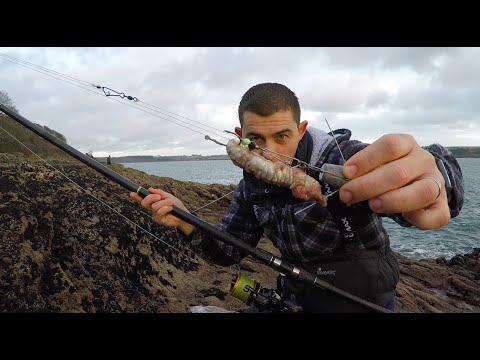 Winter Shore Fishing Cornwall - Day And Night Fishing