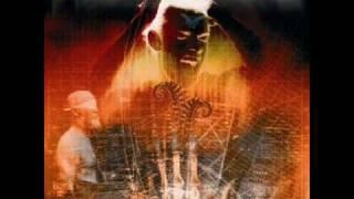 Nostradameus - The Future Will Show