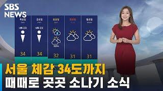 [날씨] 서울 체감 34도까지…때때로 곳곳 소나기 소식…