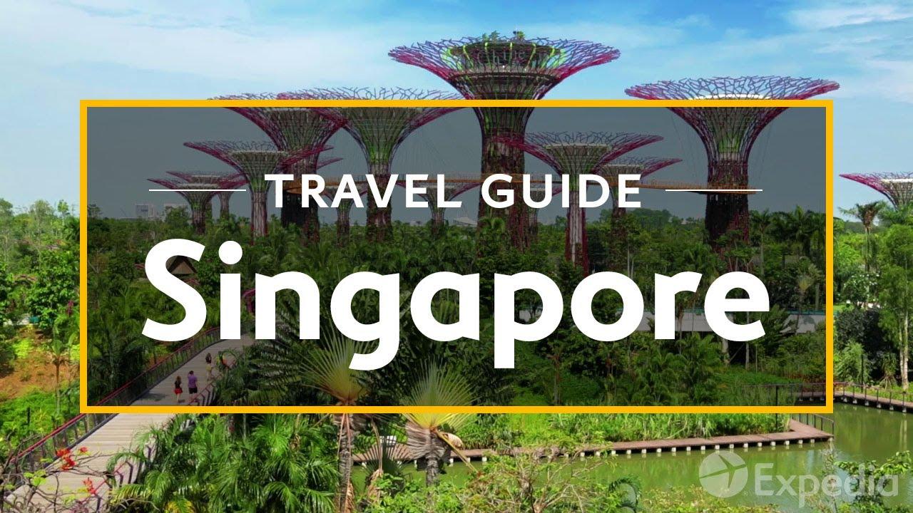 Se dice de Singapur que ¡si plantas un palo de escoba en el suelo, florecerá durante la noche!
