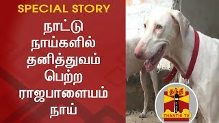 Special Story on Rajapalayam Dogs | Thanthi TV