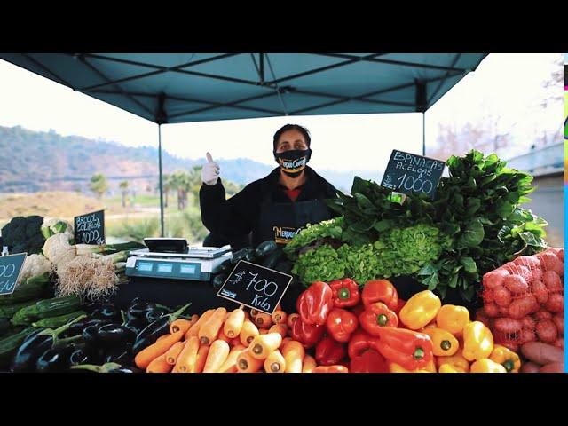 Mercado Campesino Llega a Vitacura