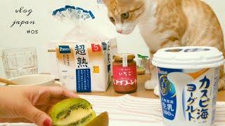 vlog/일본일상 브이로그/빵집,샤인머스켓 푸딩, 스시…
