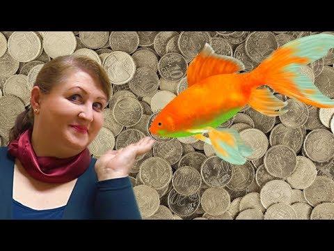 психология денег долги