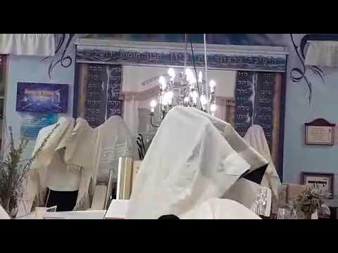 """הרב דב קוק בברכת כהנים - חוה""""מ סוכות תש""""פ"""