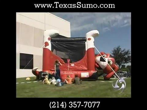 Beagle Belly Bounce House - Dallas Rental