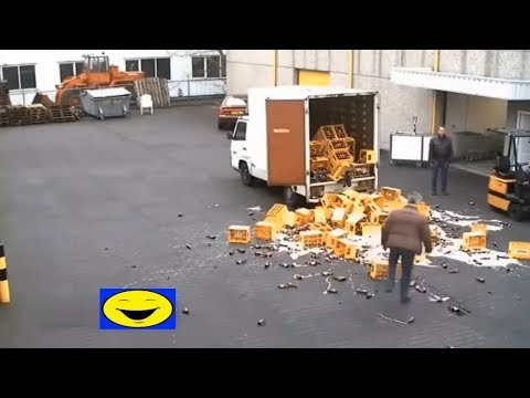 The dumbest workers in the world