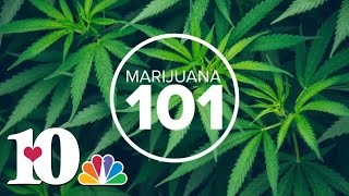 Marijuana 101: Is mariĴuana a gateway drug?