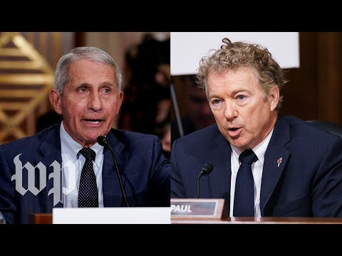 Fauci And Paul's Heated Exchange On NIH Research In China