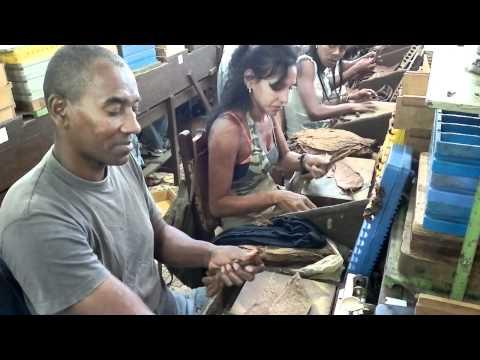 Cuban Cigar Tours - Inside the Romeo y Julieta Factory in Havana, Cuba