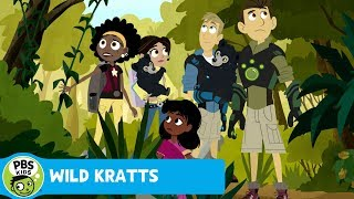 Wild Kratts: Sloth Bear Suction thumbnail