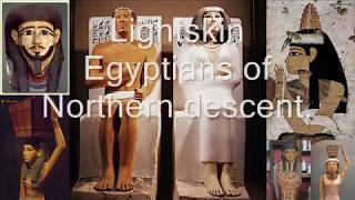 Science of Egyptian Mummies hair, Phoenician7 get's CRUSHED Kemet Egypt Cairo Nubia.wmv