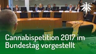 Cannabispetition 2017 im Bundestag vorgestellt   DHV-News #169