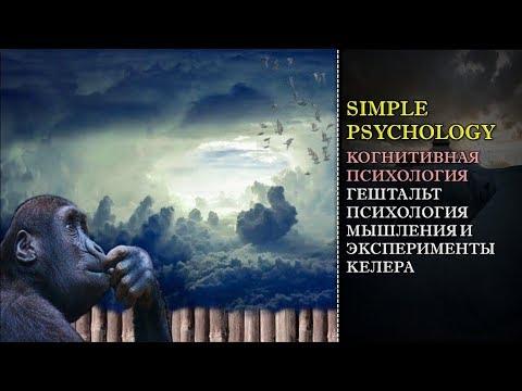 Когнитивная психология мышления #79. Гештальтпсихология мышления, инсайт и эксперименты Келера