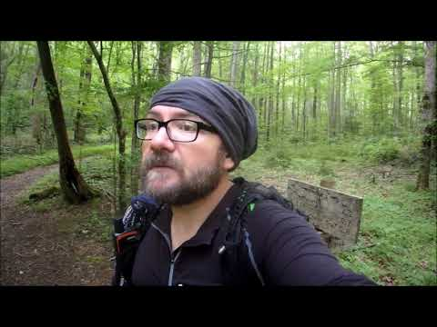 GSMNP Backpacking |  Elkmont | Fireflies, Creeks And ...Bees?