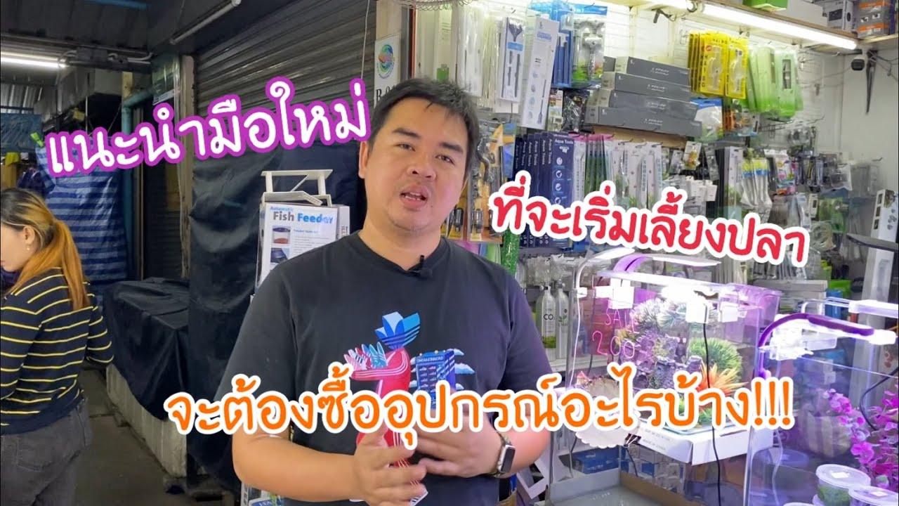 แนะนำมือใหม่ ที่จะเริ่มเลี้ยงปลา จะต้องซื้ออุปกรณ์อะไรบ้าง !!!