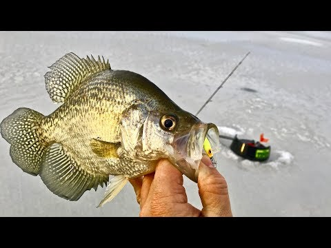 How to fish SPOONS for Flowage Crappie Big Water Fishing Tips