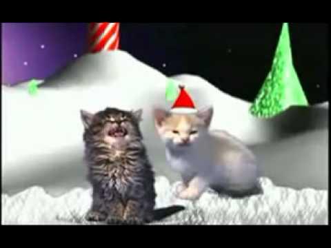 Canção Gatinhos Canta Natal 2014