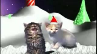 Canção de Natal dos gatinhos