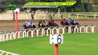 Vidéo de la course PMU MAIDEN 4 ANS