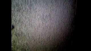 Короед. Нанесение декоративной штукатурки. Нанесение короеда. Утепление дома. Москва и обл.(Качественное нанесение декоративной штукатурки