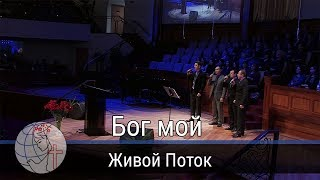 Живой Поток - песня