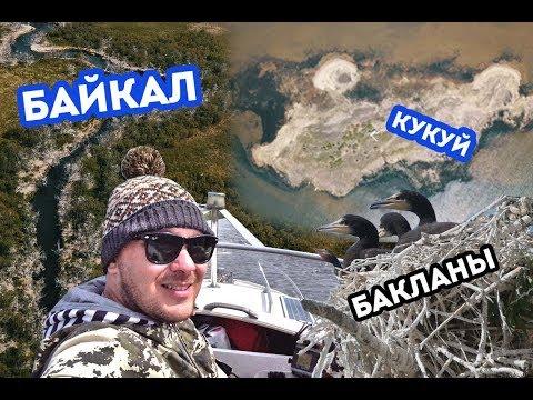 Байкал. Бакланы. Остров