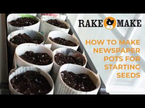 How to Make Newspaper Pots for Starting Seeds