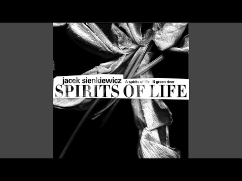 Spirits Of Life (Original Mix)