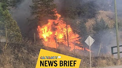 Caught in Monte Lake wildfire