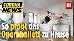 Damit die Ballett-Tänzer nicht wegen Corona aus der Form kommen, trainieren sie virtuell