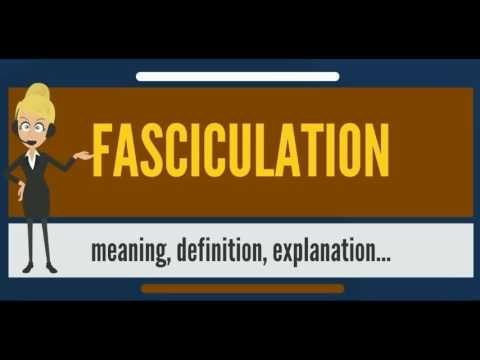 What is FASCICULATION? What does FASCICULATION mean? FASCICULATION meaning & explanation