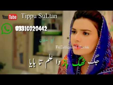 dil-kithay-kharai-status  mushtaq-cheena  #tippusultan  zahoor-ahmad-lohar
