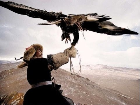 CACCIANDO - Caccia In Mongolia,  Eagles Vs Wolves Amazing Hunt