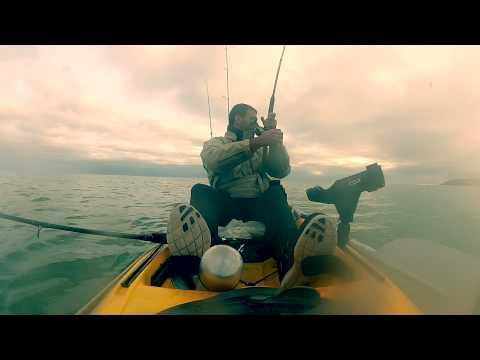 Kayak Fish Mission Berry Head, Brixham, Big Surprise!