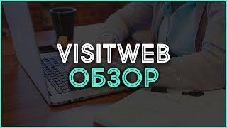 Рекламная сеть VisitWeb. Обзор, отзывы, выплаты и заработок в Интернете.