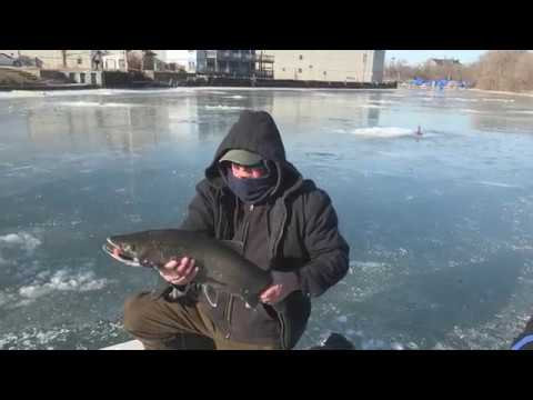 Ice Fishing for brown trout and steelhead on root river