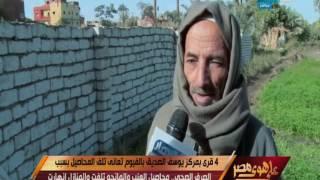 على هوى مصر - 4 قرى بمركز يوسف الصديق بالفيوم تعاني تلف المحاصيل بسبب الصرف الصحي