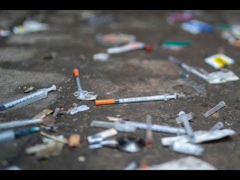 أرقام صادمة في اليوم العالمي لمكافحة المخدرات  - نشر قبل 4 ساعة