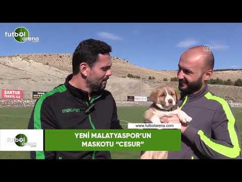 "Yeni Malatyaspor'un Maskotu ""Cesur"""