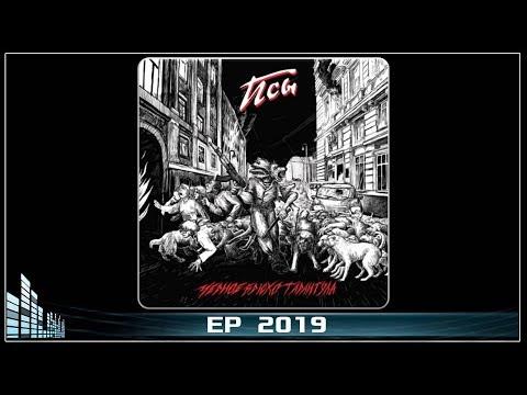 Черное Брюхо Тарантула - Псы (2019) (Thrash Death Metal)