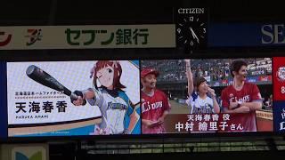 2017年8月6日(日)埼玉西武ライオンズ 対福岡ソフトバンクホークス戦で開...