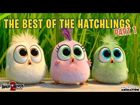 The Angry Birds Movie 2 | Best of the Hatchlings | Part 1
