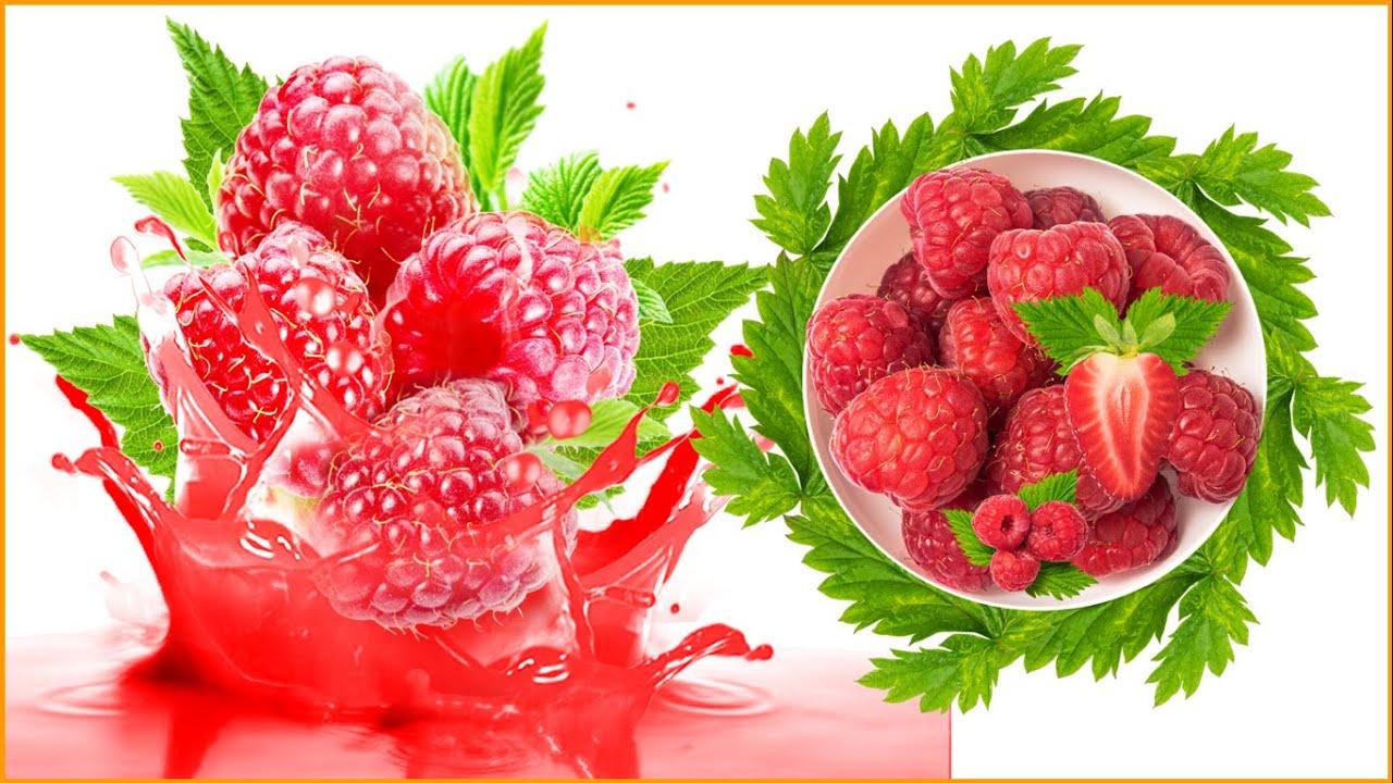 Madame Raspberry; a pierde in greutate; în farmacie; aplicare; ingrediente; comentarii; Acțiune;