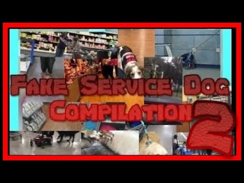 MORE FAKE SERVICE DOGS!!! (COMPILATION)