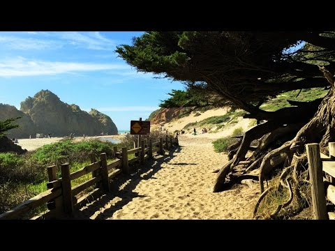 Pfeiffer Beach (Big Sur, CA)