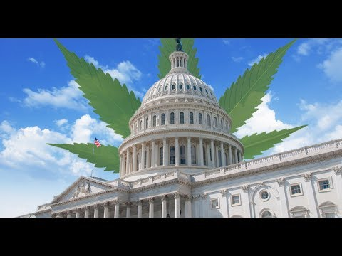 EconoMinute: The Economy of Cannabis