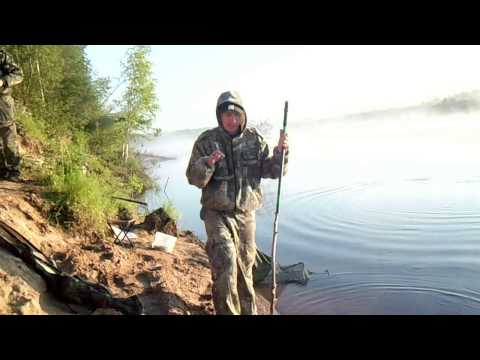 насадка из манки для рыбалки как делать