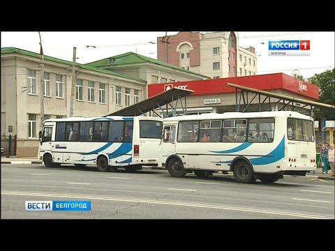 Белгородцы недовольны работой новых маршрутов общественного транспорта